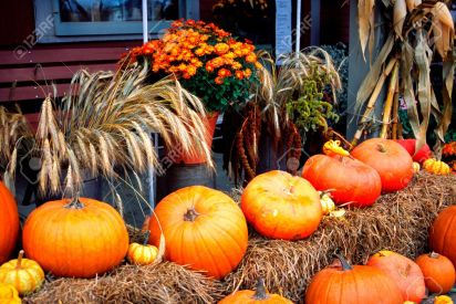 614738-Pumpkins-display-during-autumn-in-Vermont-USA-Stock-Photo